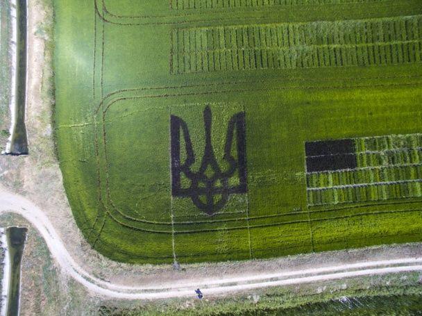 Поле Херсонщини прикрасив велетенський герб, який видно із космосу