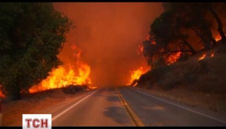 Более полутора тысяч человек эвакуировали из-за лесного пожара неподалеку от Лос-Анджелеса