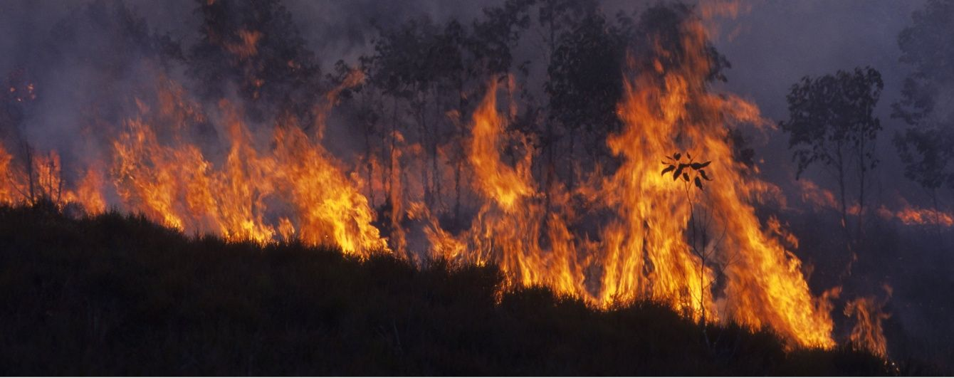 На Мадагаскарі під час вечірки в будинку спалахнула пожежа, 38 осіб загинули