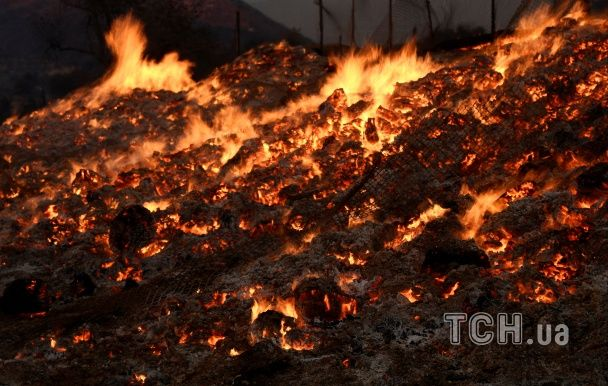 Люті лісові пожежі у Каліфорнії знищили 13 тис га лісу і змусили тисячі людей залишити свої домівки