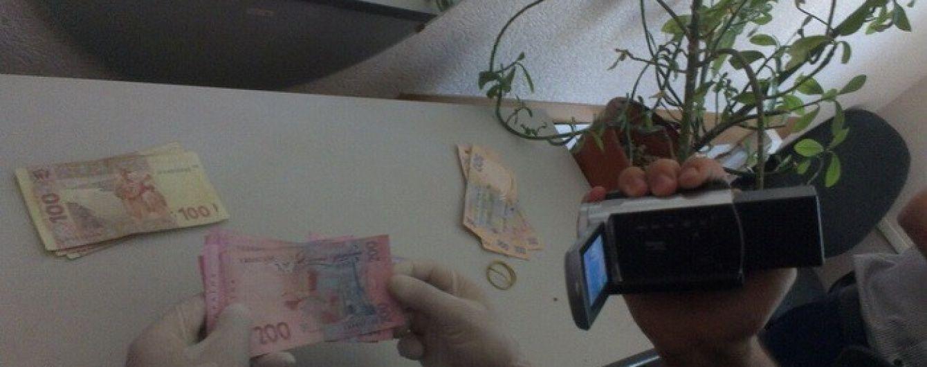 На Черкащині на хабарі погорів головний ревізор фіскальної служби