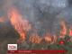 Площа лісових пожеж у штаті Каліфорнія зростає