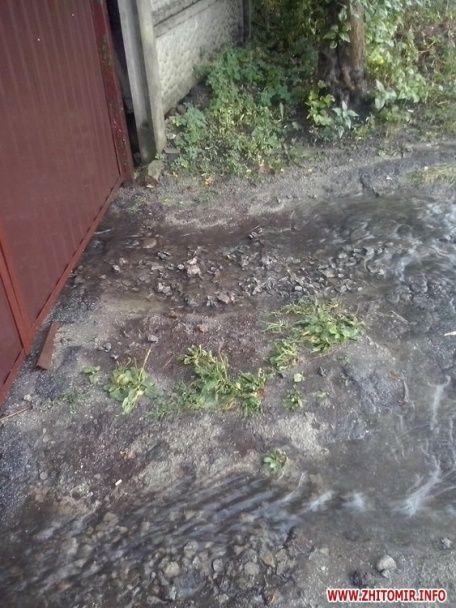 У Житомирі після дощу затопило вулиці, діти пірнали просто посеред дороги