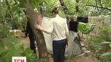 Семья из Горловки сбежала от ДНРовцев и сейчас обживает лесополосу