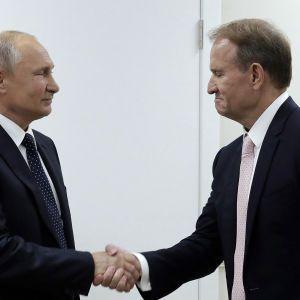 В Кремле ответили, обращался ли кум Путина Медведчук за политическим убежищем в Россию