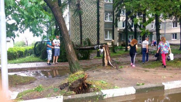 "Нашестя крижаних ""тваринок"". На Львівщині вирувала негода, яка потрощила дерева та балкони"