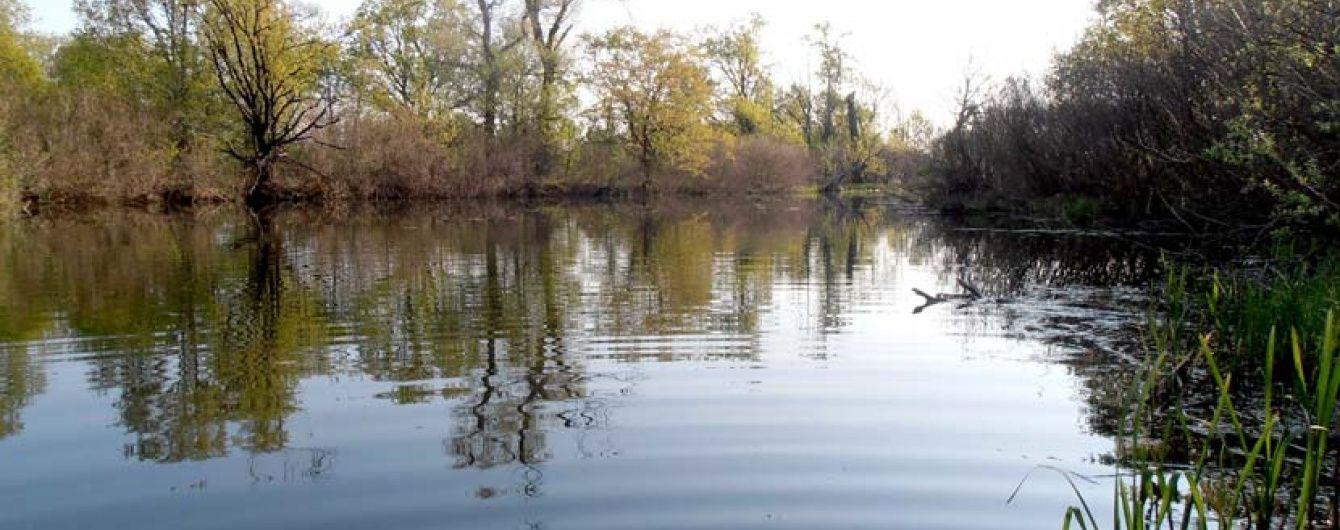 У Києві в одній із річок виявили підвищений рівень хімікатів