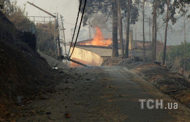Через пожежу на португальській Мадейрі сотні людей звернулись до лікарень
