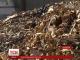 Гори кісток, здохлі тварини та отруєна земля: на Львівщині костомельний завод працює, порушуючи санітарні норми