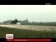 На трасу Київ-Чоп приземлилися винищувачі та бомбардувальники
