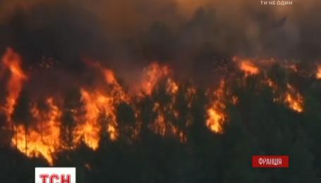 На юге Франции бушуют мощные лесные пожары, есть пострадавшие