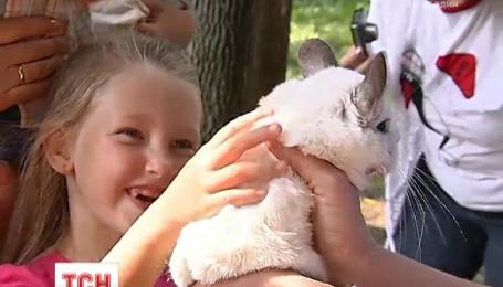 У Київському зоопарку для дітей влаштували день ветеринара