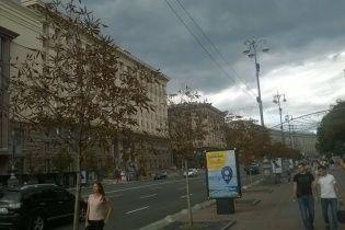 Киевлянам предлагают выбрать деревья, которые высадят на Крещатике вместо засохших каштанов-подделок