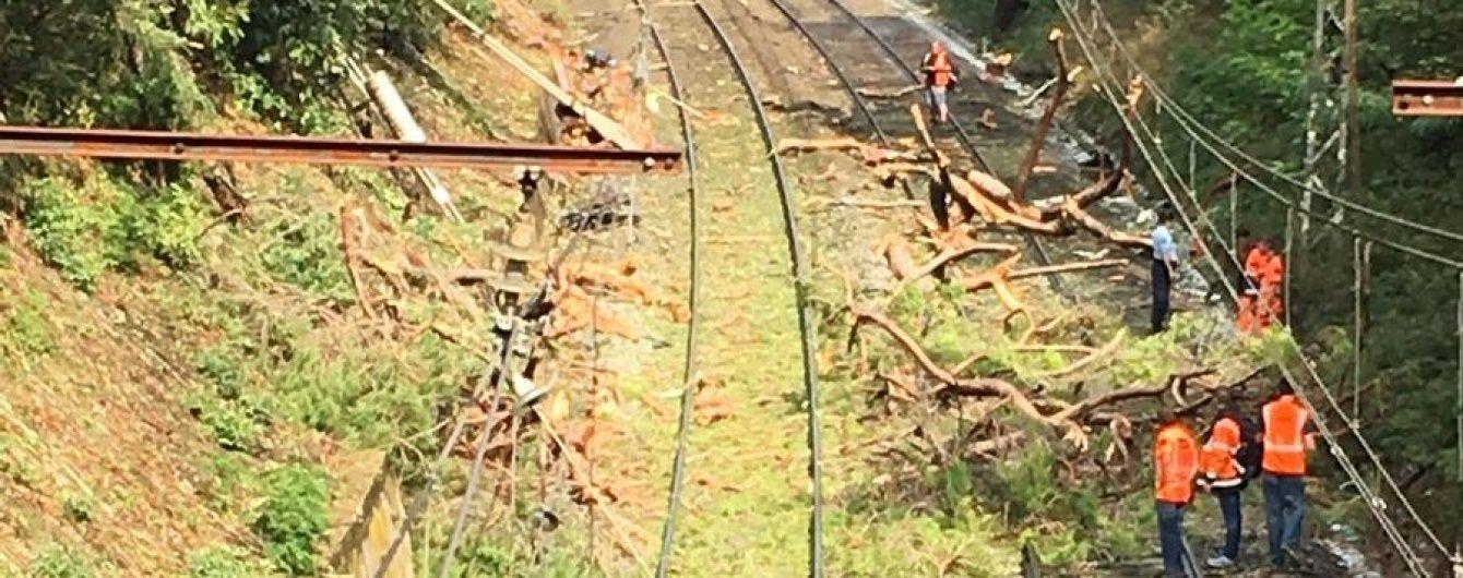 У Франції потяг зіштовхнувся із деревом: десятки постраждалих
