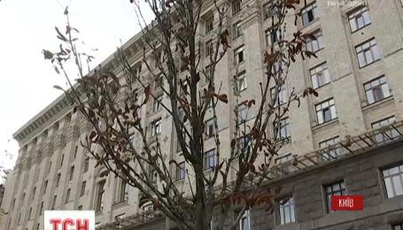 В Киеве завяли каштаны на Крещатике, которые покупали по 430 евро за саженец