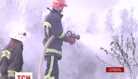 Вблизи Тернополя спасатели более суток пытаются потушить масштабный пожар