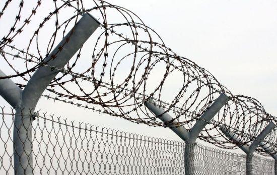У Житомирі в'язнів годували курятиною із сальмонелою
