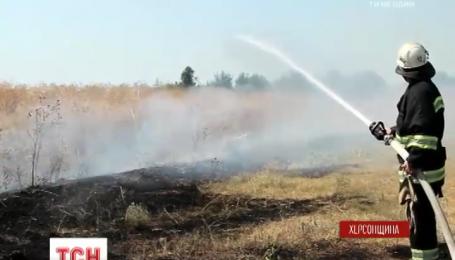 Масштабные пожары уничтожают гектары рукотворного леса на Херсонщине