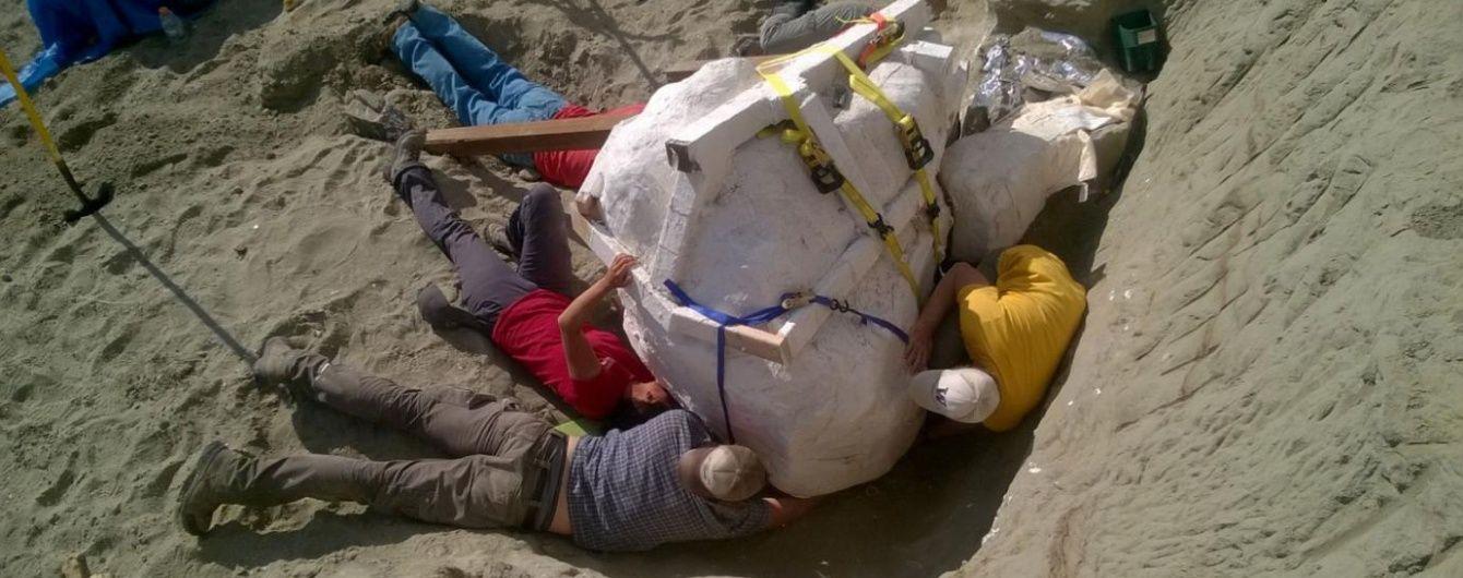У США палеонтологи розкопали рідкісний череп тиранозавтра вагою 2,5 тонни