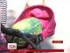 Фестиваль кавунів і динь: баштанники розповіли, коли і де можна купити найдешевші ягоди