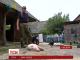 На Рівненщині ветеринари зафіксували спалахи африканської чуми