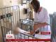На Житомирщині батьки протягом трьох діб приховували вогнепальне поранення маленького сина