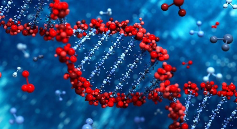 Генетичні хвороби можуть бути подолані через 4-5 років – українські вчені