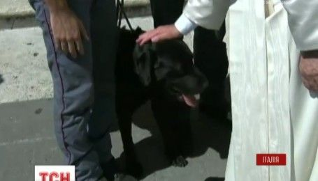 В Италии собака-спасатель встретился с Папой Римским