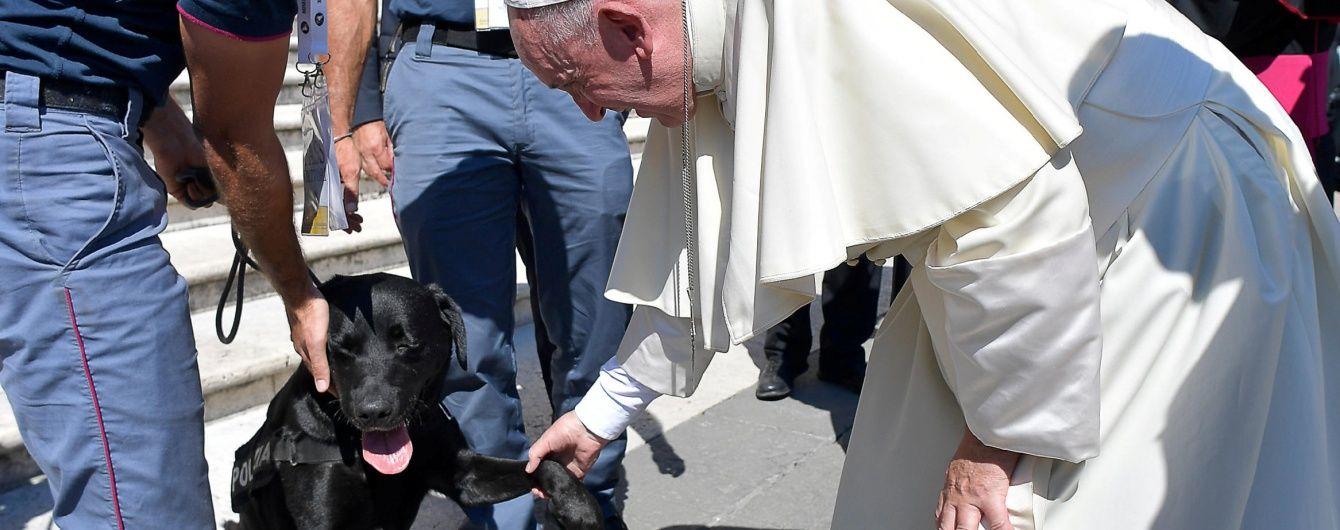 Папа Франциск потиснув лапу собаці, який урятував дівчинку після землетрусу