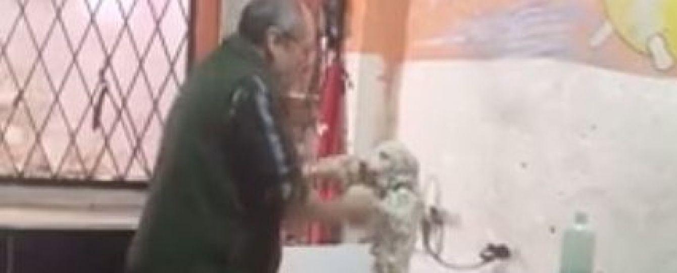 Юзери Мережі шаленіють від кумедного перукаря для собак, який танцює з улюбленцем