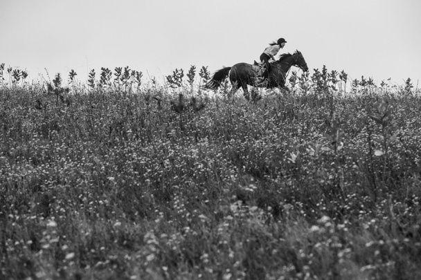 Ніжна Соломія Вітвіцька верхи на коні знялася у ефектній чорно-білій фотосесії