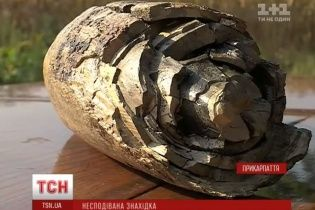 Сенсационная находка. На Прикарпатье выкопали бивень мамонта