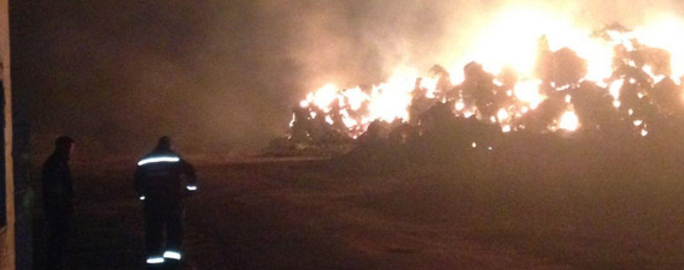 У сумнозвісному Кривому Озері сталася масштабна пожежа