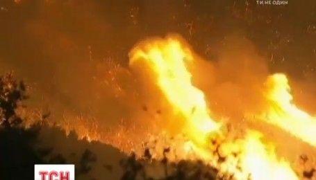 Через масштабну пожежу в Каліфорнії терміново евакуювали півтисячі людей