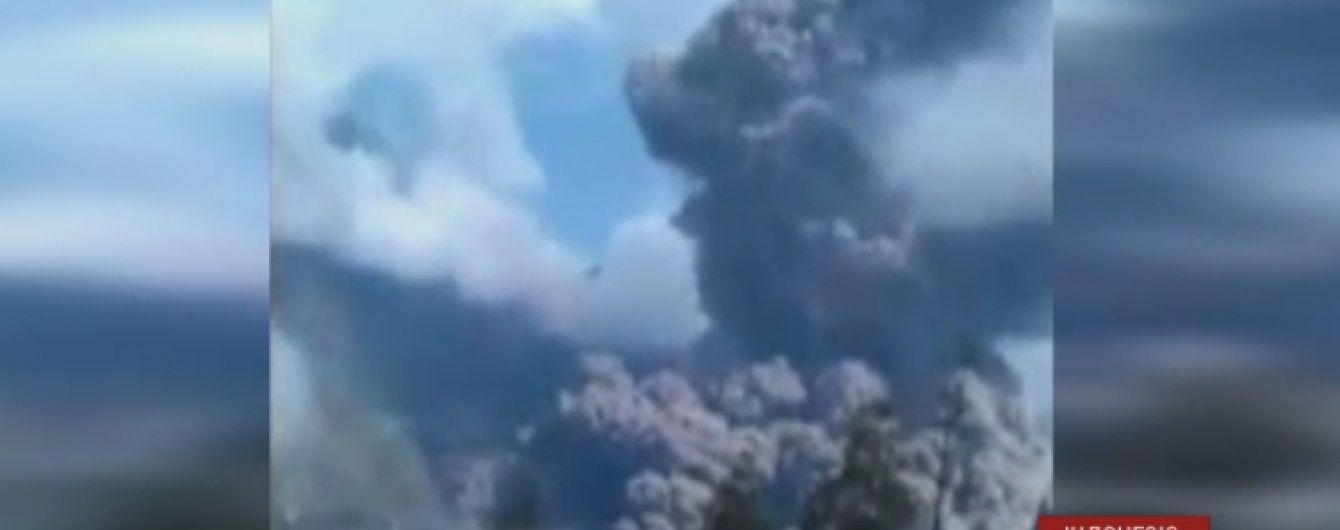 В Индонезии разыскивают сотни туристов, которые пропали во время внезапного извержения вулкана