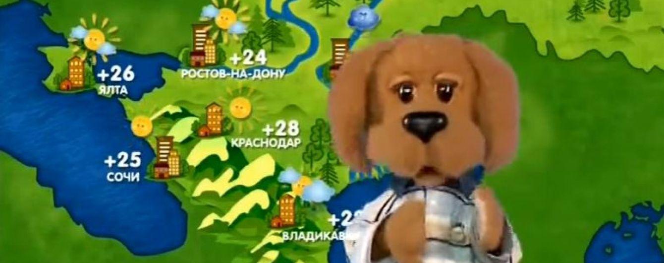 """Нацсовет расправился с тремя российскими каналами из-за сепаратистов """"Фили"""" и """"Хрюши"""""""