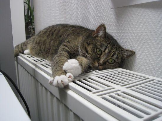 Кличко розповів, коли у квартирах киян буде тепло