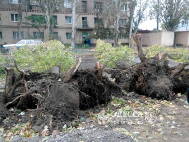 Шквальний вітер в Одесі повалив будівельний кран та частково зупинив міський транспорт
