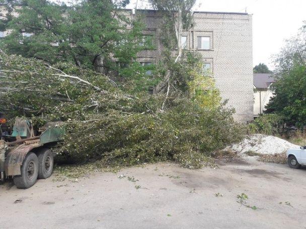 Руйнівна стихія дісталася Запоріжжя: затопило базу відпочинку та почали падати дерева
