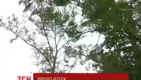 Мощный циклон движется по территории Украины