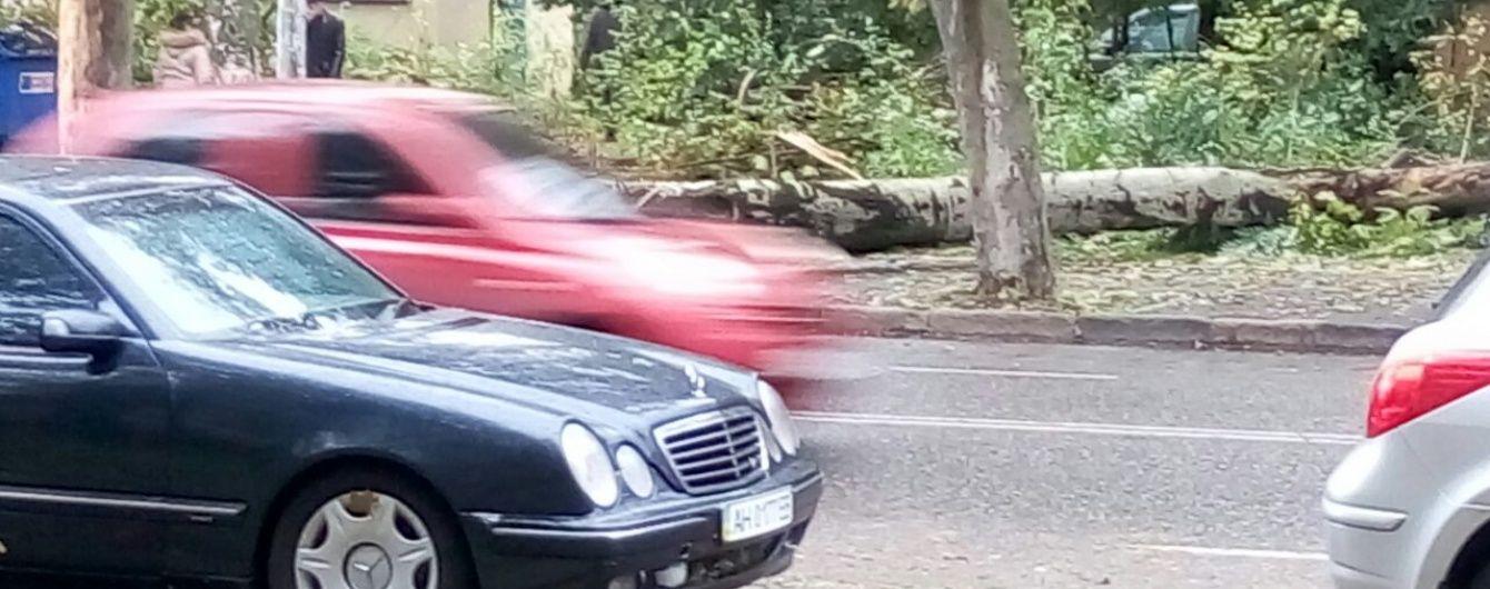 Одесса приходит в себя после сокрушительного шторма. В городе наконец восстановили движение транспорта