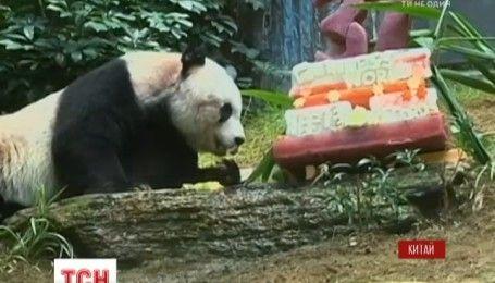 В Гонконге усыпили самую старую в мире панду