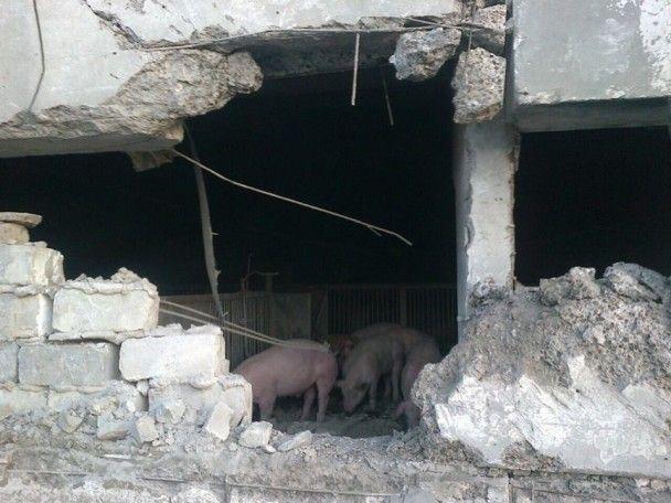 Бойовики вночі накрили вогнем село на Донеччині, загинув мирний мешканець
