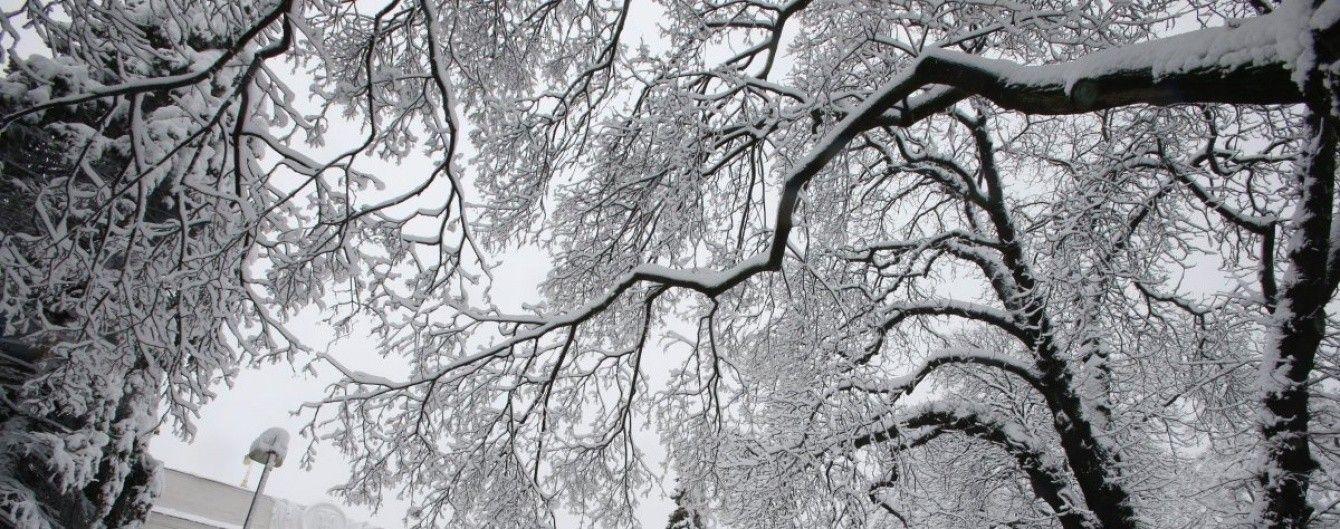 Сніг, ожеледиця і лише мінусова температура. Прогноз погоди на 30 листопада