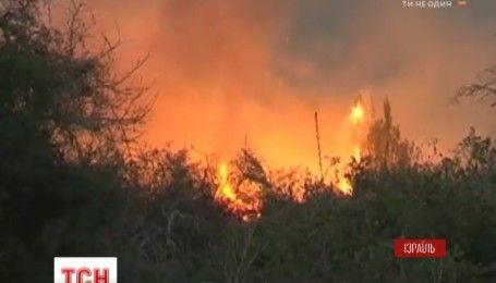 Вогнеборцям п'ятий день не вдається приборкати полум`я в Ізраїлі
