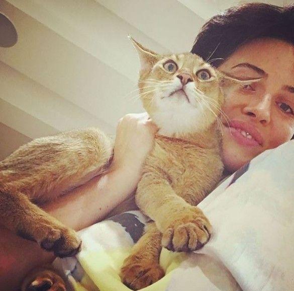 Астаф`єва зі своїми котами_3