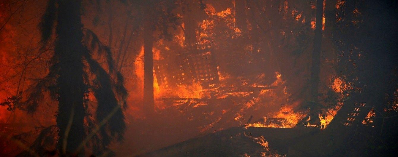 МЗС України повідомило про центри прийому евакуйованих унаслідок пожежі в Хайфі