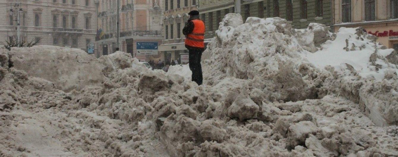Из-за циклона на Львовщине обесточены десятки населенных пунктов