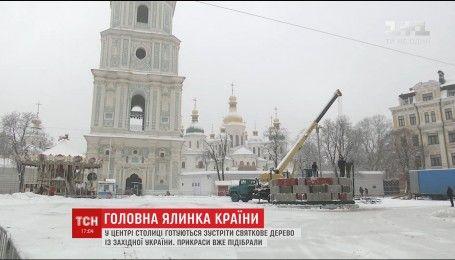 На Софийской площади готовятся установить главную елку страны