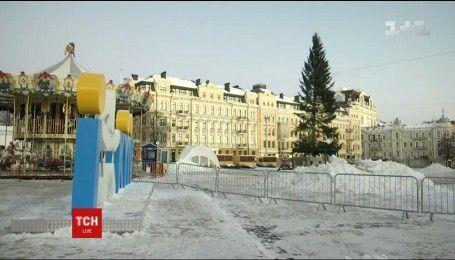 Елку-рекордсменку из Прикарпатья уже установили в столице